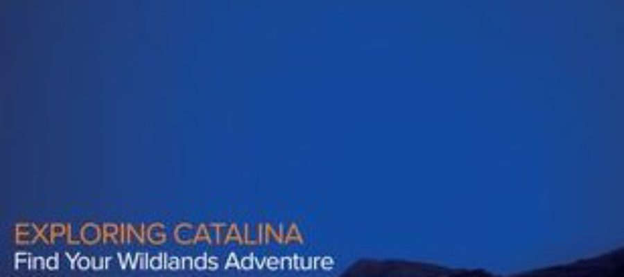 Our Newest Publication: Explore and Experience Catalina